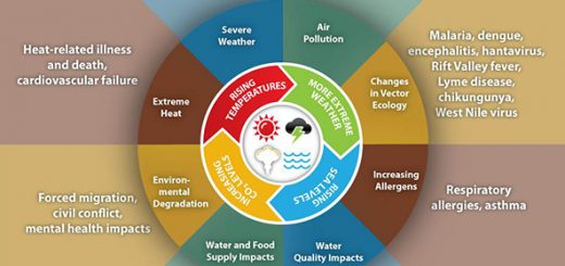 climate_change_health_impacts600w-1
